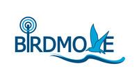 BIRDMOVE Logo